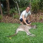 The Steve Irwin Australia Zoo in Beerwah, Queensland Diary Photos