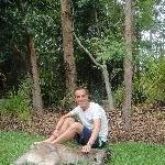 The Steve Irwin Australia Zoo in Beerwah, Queensland Vacation Adventure