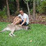The Steve Irwin Australia Zoo in Beerwah, Queensland Travel Adventure