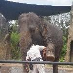 The Steve Irwin Australia Zoo in Beerwah, Queensland Blog Sharing