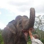 The Steve Irwin Australia Zoo in Beerwah, Queensland Diary Photos
