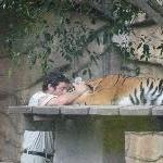 The Steve Irwin Australia Zoo in Beerwah, Queensland Vacation Information