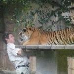 The Steve Irwin Australia Zoo in Beerwah, Queensland Travel Blogs