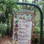 The Steve Irwin Australia Zoo in Beerwah, Queensland Travel Picture