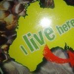 The Steve Irwin Australia Zoo in Beerwah, Queensland Picture