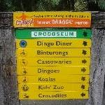 The Steve Irwin Australia Zoo in Beerwah, Queensland Vacation Pictures