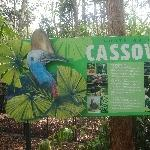 The Steve Irwin Australia Zoo in Beerwah, Queensland Travel Photos