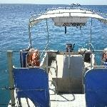 The Great Barrier Reef platform