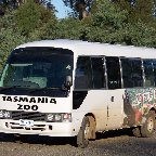 Launceston Australia Bus Service to the Tasmania Zoo