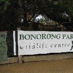 Brighton Australia Bonorong Wildlife Conservation Park