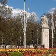 Tulip gardens around Buckingham Palace