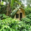 Our Jungle chalet in Ubajara