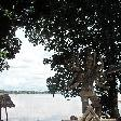 Vientiane Laos The Xieng Khuan Buddha Park