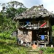 Pictures of our lodge in the Jungle