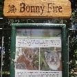The yard of Koala Bonny fire
