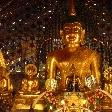 Golden Buddha statues in Chiang Mai