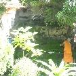 Monk in the gardens of Wat Si Saket