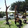 Musicians in Apollo Bay