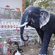 The Elephant statue