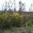 Bush fires on Kangaroo Island
