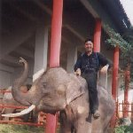 Photo of me on an elephant in Bangkok.