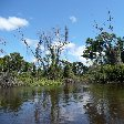 Pampas tour, through the swamps of Bolivia.