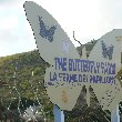 The Butterfly Farm in Philipsburg, Sint Maarten
