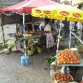 The open air market in Basseterre, Saint Kitts and Nevis