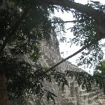 Pictures of the Mayan Ruins in Tikal National Park, Guatemala, Arenal Guatemala