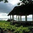 Apia Samoa Photography