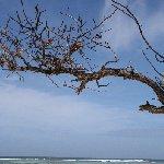 Victoria Seychelles Information
