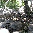 Sailing Seychelles Best Beaches Victoria Album Photos