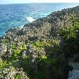 The Landscapes of Niue Island Alofi Blog Sharing