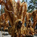 Trinidad carnival 2010 pictures Port-of-Spain Trinidad and Tobago Blog Pictures