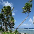 Photos from Funafuti atoll of Tuvalu Travel Blogs
