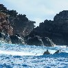 Pitcairn Island photos and travel tips Adamstown Pitcairn Islands Information