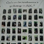 Lola Ya Bonobo sanctuary near Kinshasa Democratic Republic of the Congo Album Photos