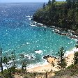 Norfolk Island pine tree tours Kingston Holiday Tips