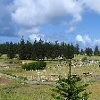 Kingston Norfolk Island Blog Pictures