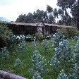 Ruhengeri Rwanda Diary Photography