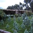Rwanda Volcanoes National Park Ruhengeri Diary Photography Rwanda Volcanoes National Park