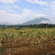 Rwanda Volcanoes National Park Ruhengeri Travel Photographs
