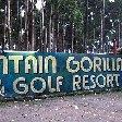 Rwanda Volcanoes National Park Ruhengeri Vacation Experience