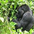 Ruhengeri Rwanda