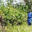 Rusizi National Park Bujumbura Burundi Diary Adventure
