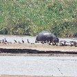 Rusizi National Park Bujumbura Burundi Album