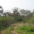 Rusizi National Park Bujumbura Burundi Diary Sharing