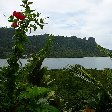 Federated States of Micronesia pictures Pohnpei Photos
