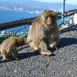 Gibraltar Trip Picture