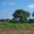 Dzangha-Sangha National Park and Boali Bangui Central African Republic Blog Photos